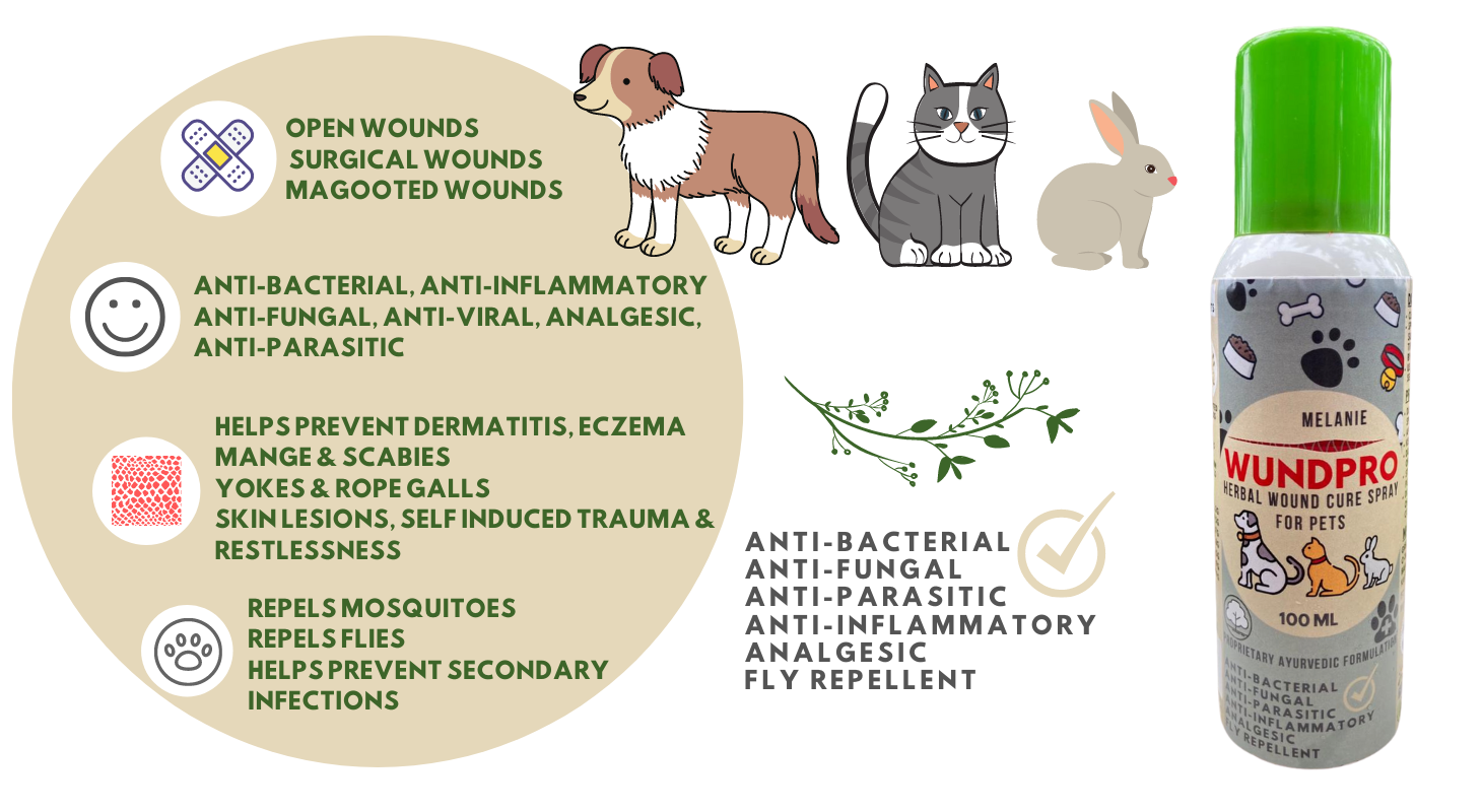 Features of Wound Spray For Pets